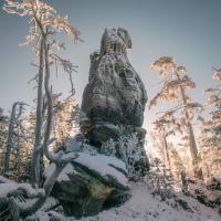 Uprostřed zmrzlé divočiny