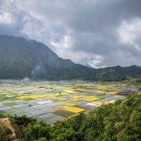 Lombok - úžasný výhled na zeleninová políčka