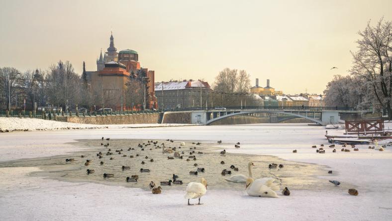 Ladovská zima na náplavce